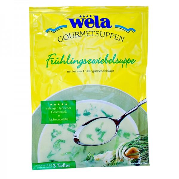 Gourmet Frühlingszwiebelsuppe